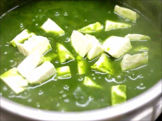Indian cottage cheese or paneer cubes added to spinach masala