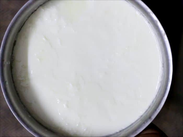 Homemade yogurt ready